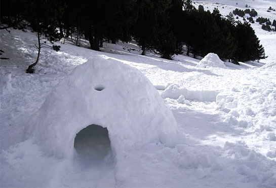 entornos-extremos-iglu