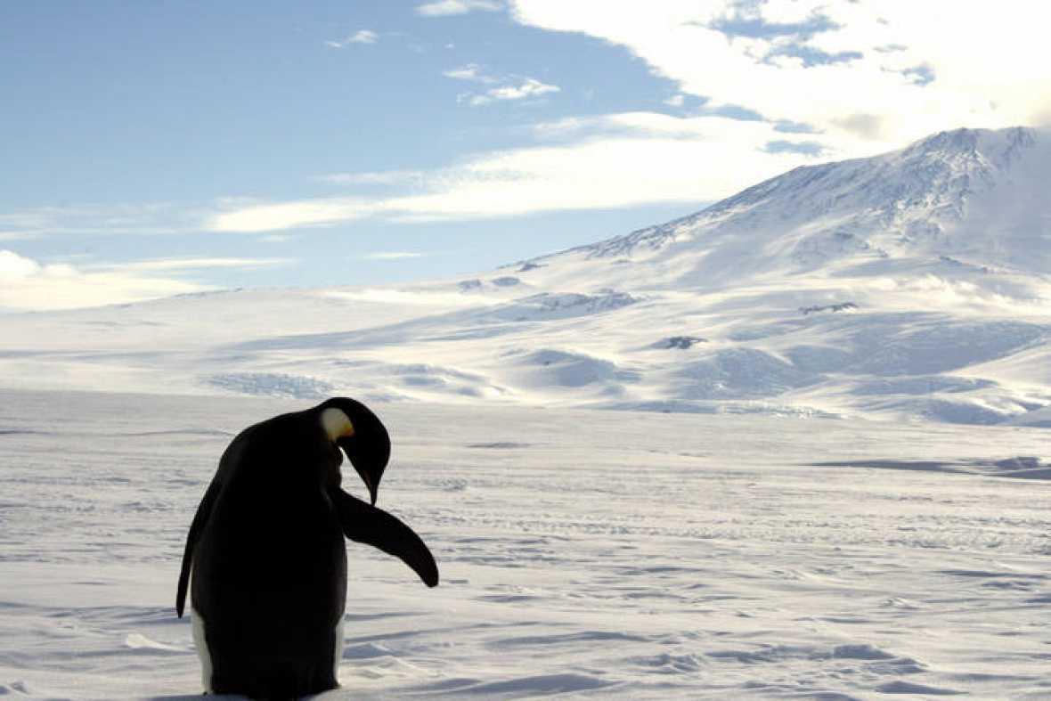 12 misterios sobre la Antártida que te dejarán helado