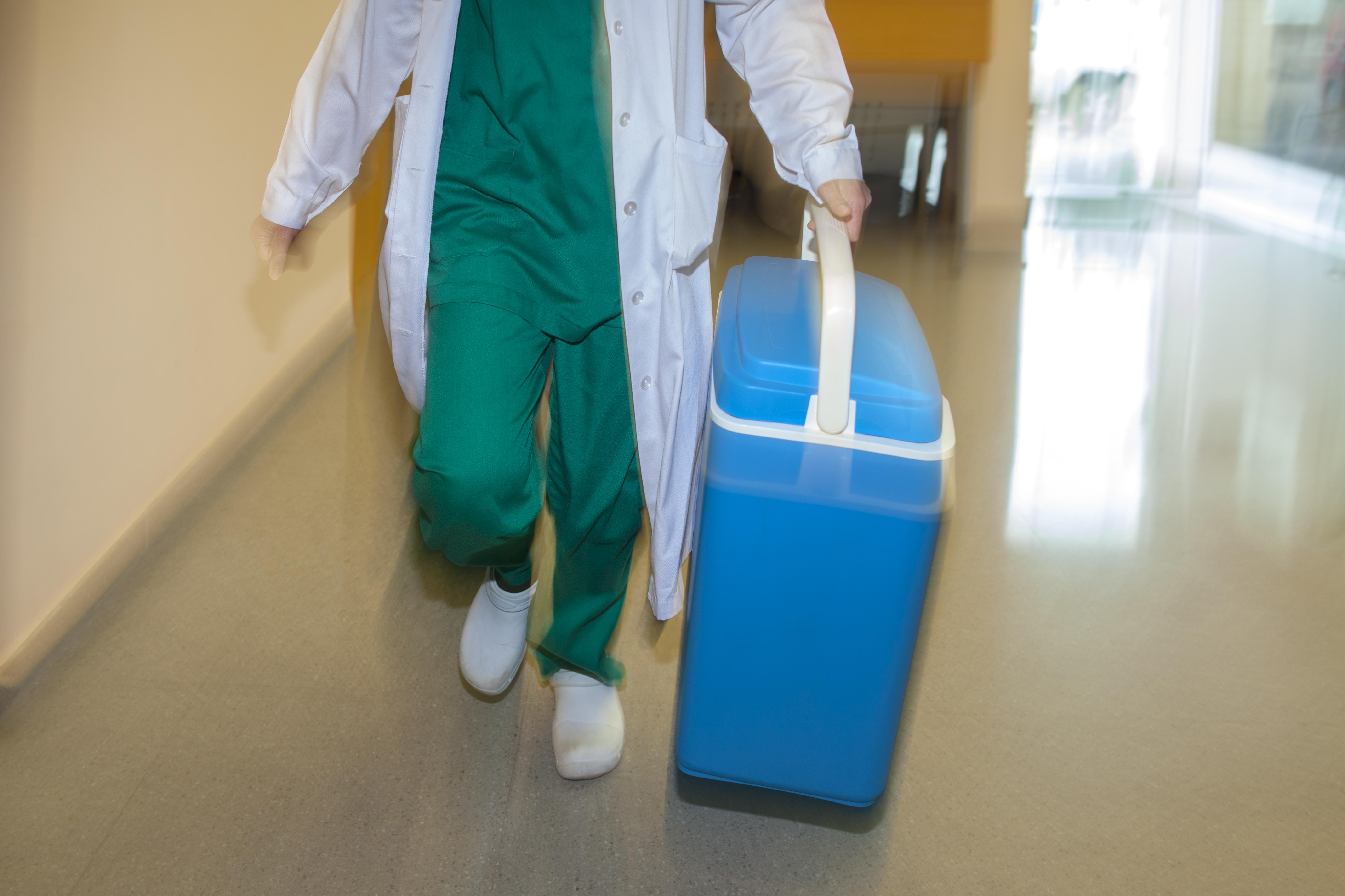 La importancia del hielo enlos trasplantes / The importance of ice in organ transplantations