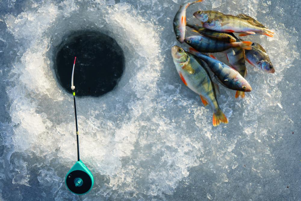 Pesca en Hielo: Todo lo que Necesitas Saber
